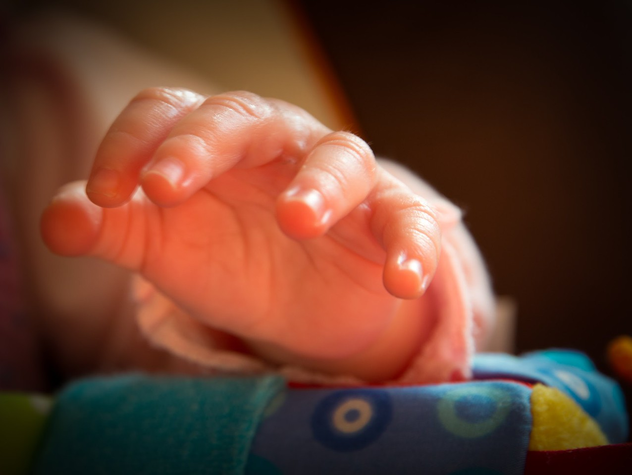 Little Hand of a Baby