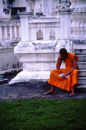 Monk Studying, Chiang Mai, Thailand