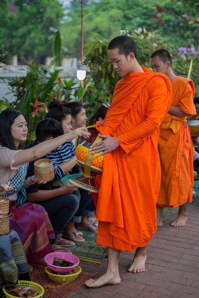 Alms giving ceremony in Luang Prabang, Laos