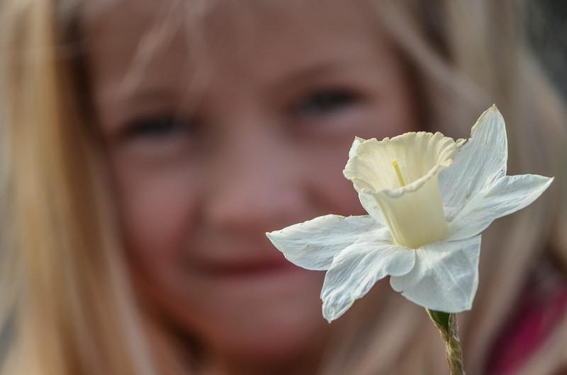 A Girl Holding a Dafodil