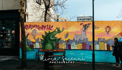 Graffiti in Reykjavik 2