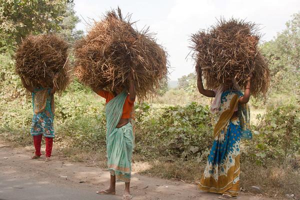 Women's work, India