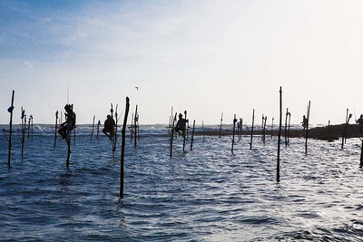 Stilt Fisherman II