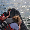 Everyone should kiss a whale.  Maybe then they wouldn't kill them