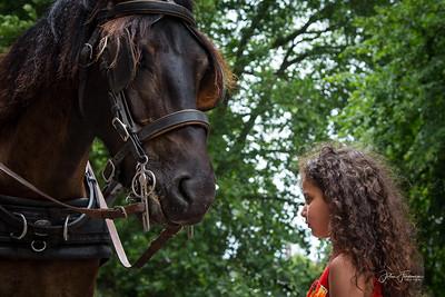 Carriage horse & girl, Bruges