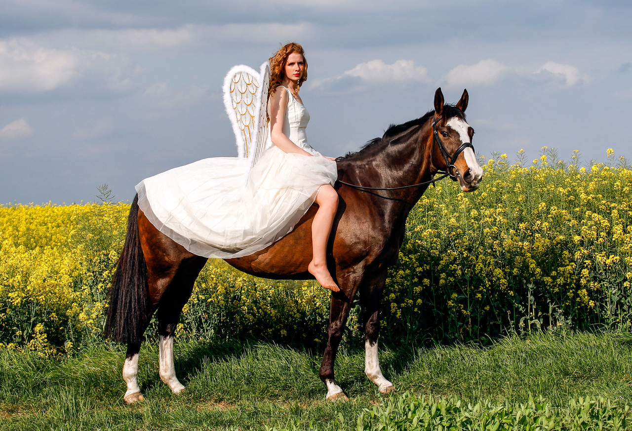 Angel on Horseback