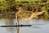 Net fishing, Assam