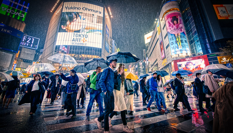 A Walk Through Rainy Tokyo
