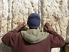 Ethiopian Jew Praying at Western Wall