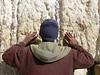 Ethiopian Jew Praying at Western Wall