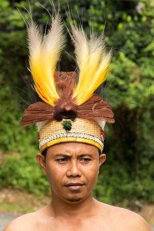 Red bird of paradise headdress