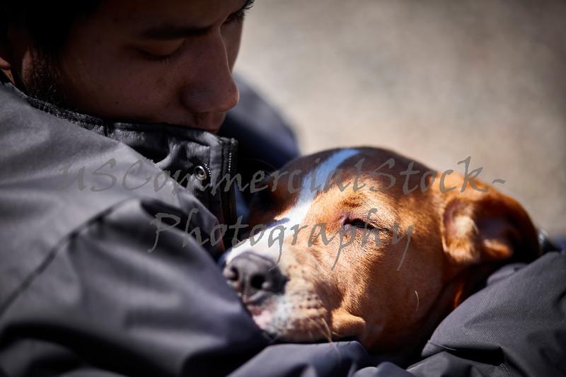 man holding sleepy puppy dog closeup selective focus
