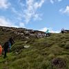 Duncarloway Hiking
