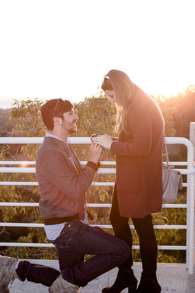 A Sunset Proposal  {Getty Center}