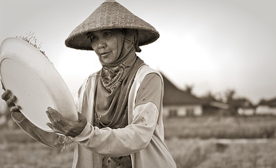 Old Woman milling Rice