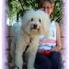 Copy of Chestnut Dog Park 042109_00023