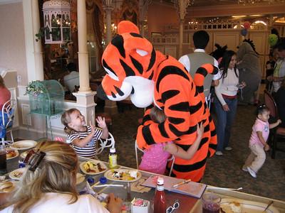 Disneyland 2007 079