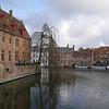 Weeping tree - Bruges, Belgium