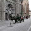 Horse & Carriage - Bruges, Belgium