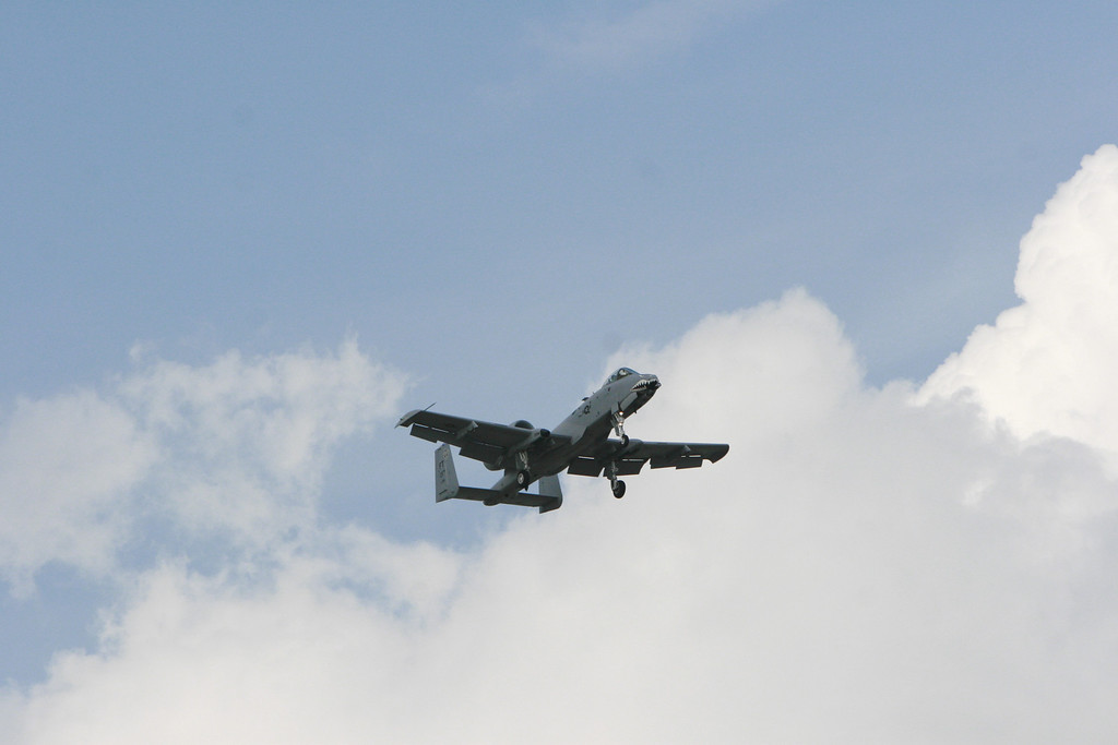 More A-10 Warthodg