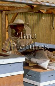 beekeeper imker apiculteur