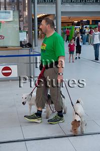 dogwalker-hondenuitlaatservice