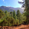 La Caldera mountain road.