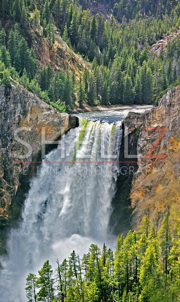 Lower Falls - Yellowstone