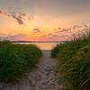 Dunegrass Sunset, Ferry Beach, Maine 20x30