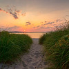 Dunegrass Sunset, Ferry Beach, Maine 20x30
