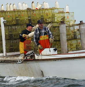 Pair of Crabbers in the Bay