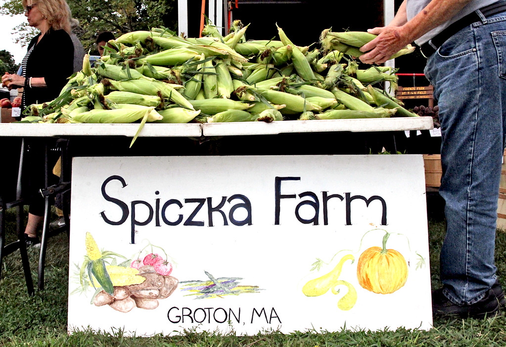 . Hand picked corn from Spiczka Farm of Groton, at the Pepperell Farmers Market. SUN/David H. Brow