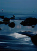 Perdido Key : 1 gallery with 108 photos