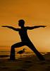 Perdido Key Heron Yoga-DSC_0037