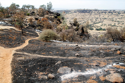 Looking from the tee at hole No. 3. The Peregrine Point Disc Golf Course was scorched by the Stoney Fire. The charred course is seen Tuesday, Aug. 14, 2018, in Chico, California. (Dan Reidel -- Enterprise-Record)