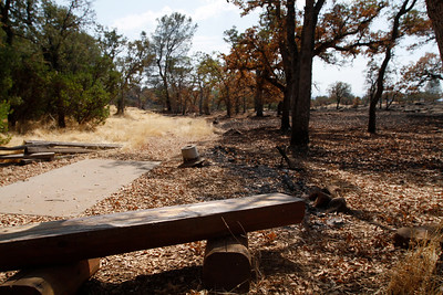 Hole No. 15. The Peregrine Point Disc Golf Course was scorched by the Stoney Fire. The charred course is seen Tuesday, Aug. 14, 2018, in Chico, California. (Dan Reidel -- Enterprise-Record)