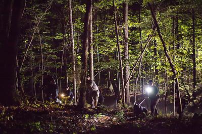 blog woods IMG_5258