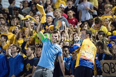 Loudoun County Fans
