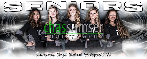 2017 Dominion Volleyball