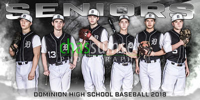 2017 DO BSB Team Banner