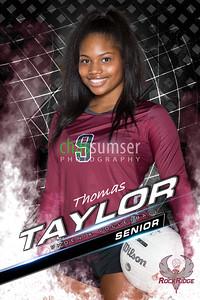 TaylorT-2
