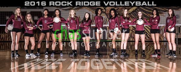 2016 Rock Ridge Volleyball Team Banner
