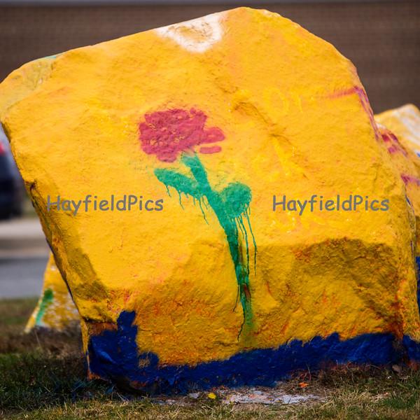 Hayfield-3851