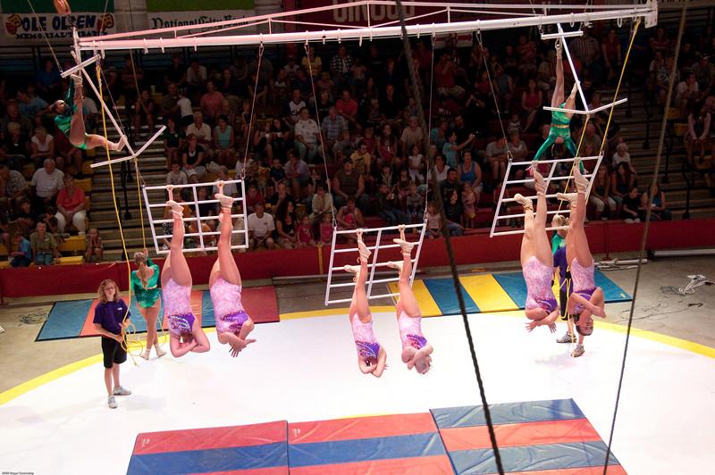 Swinging Ladders
