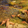John Singer Sargent, Val d'Aosta: A Man Fishing, c. 1907, oil on canvas, gift of anonymous donor, 1928.53