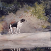 Winslow Homer, Dog on a Log, 1889, watercolor and graphite on wove paper, bequest of Candace C. Stimson, 1946.120