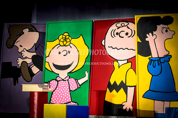 You're a Good Man Charlie Brown - 17 Jul 2013