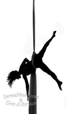 Circus Portfolio