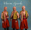 1405-2570 Harem Guards Title