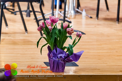 2017 Spring concert of The Brass Band of Central Illinois